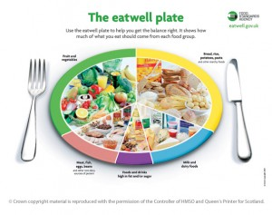 the-eat-well-plate-large